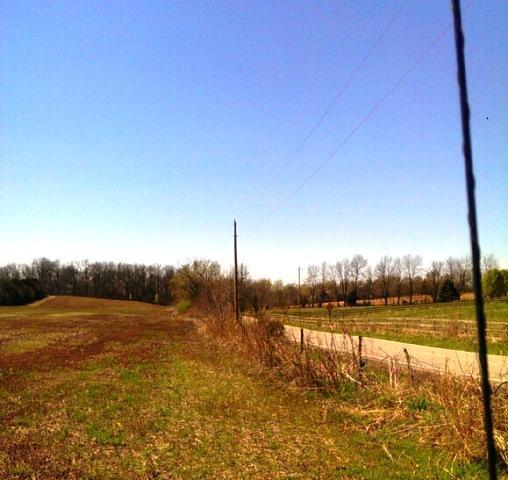 4200 South Farm Rd 227 Rogersville, MO 65742