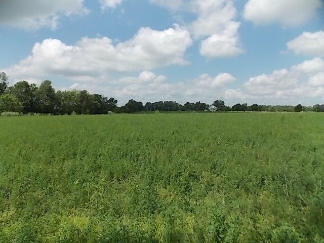East Farm Road 82 Springfield, MO 65803