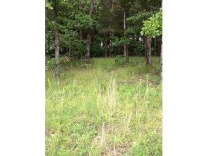 137  Spring Court Lot #27 Road Branson, MO 65616