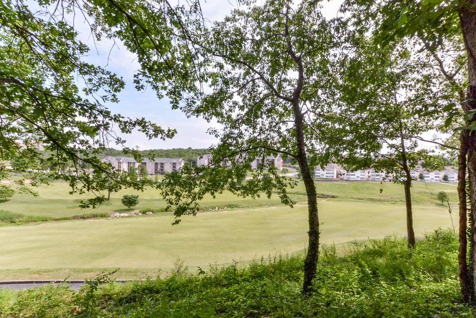 200  Golf View Drive #3 Branson, MO 65616