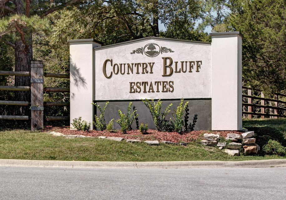 206  Country Bluff Drive Branson, MO 65616