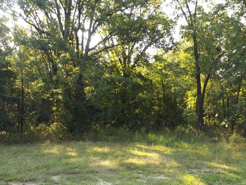 Woodbury Drive Forsyth, MO 65653
