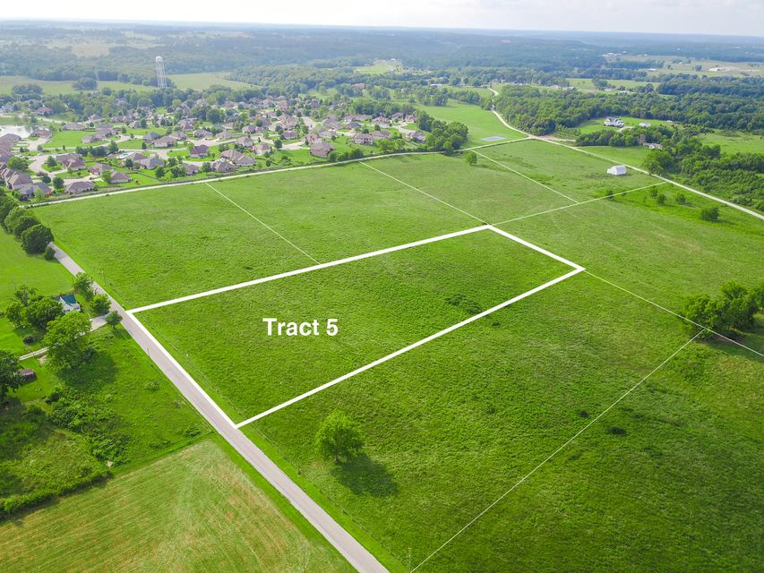 Indian Grove Lane #tract 5 Rogersville, MO 65742