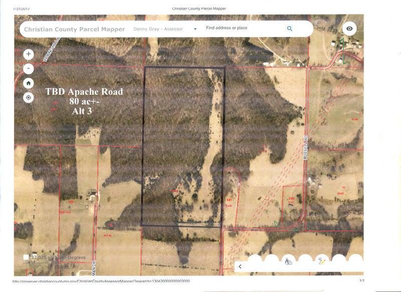 Apache Road Sparta, MO 65753