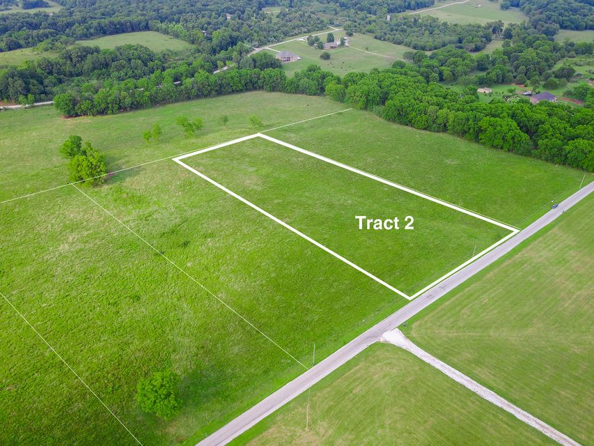 Indian Grove Lane #tract 2 Rogersville, MO 65742