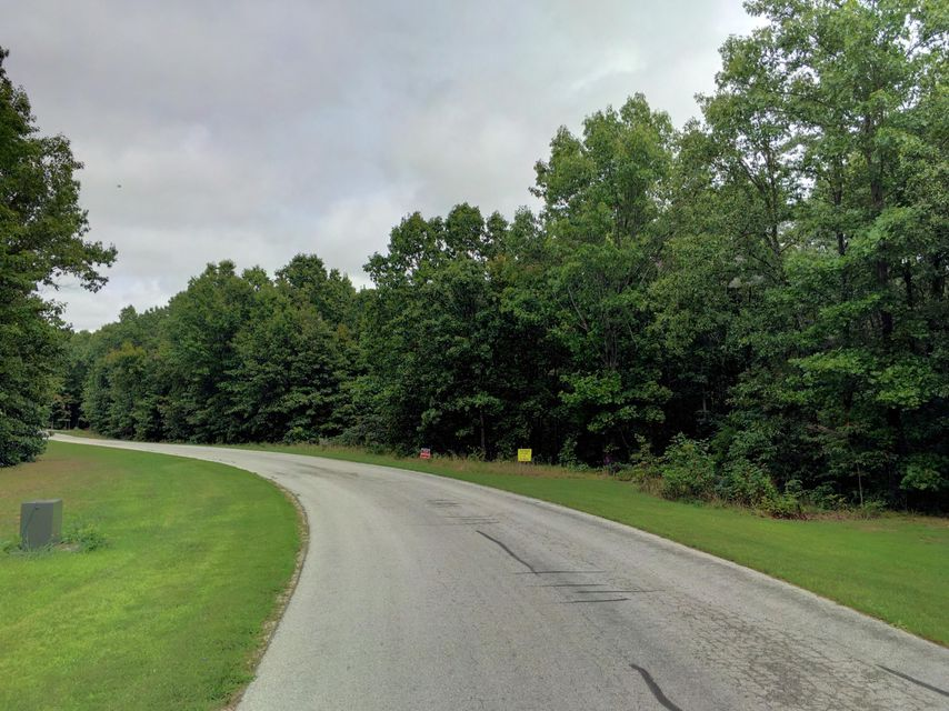 Forest Ridge Road #lot #59 Rogersville, MO 65742