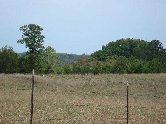 28  Farm Road 2125 Cape Fair, MO 65624