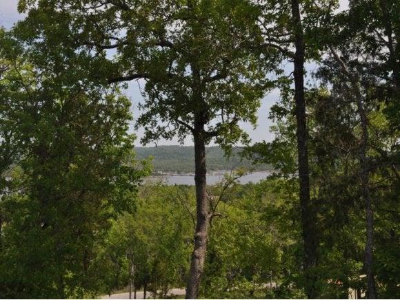 Whitefish Bay Lampe, MO 65681
