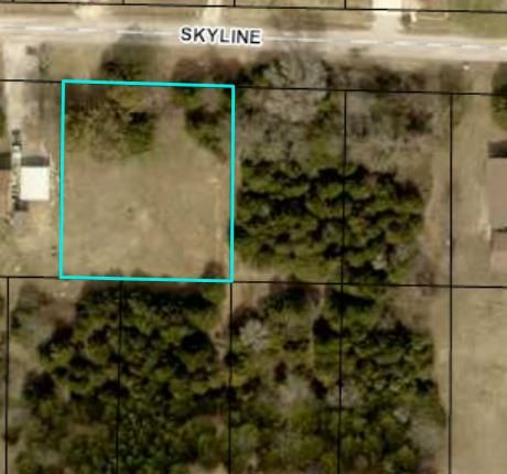 138  Skyline Drive Forsyth, MO 65653