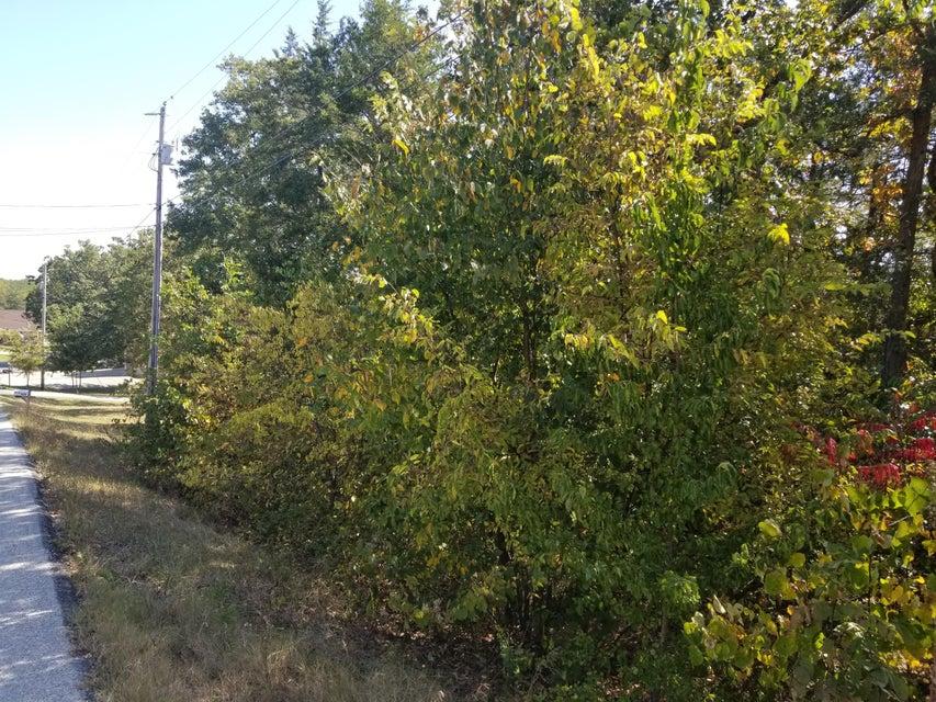 Red Bud Lane Hollister, MO 65672