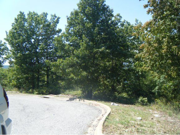 Cove View Drive Hollister, MO 65672