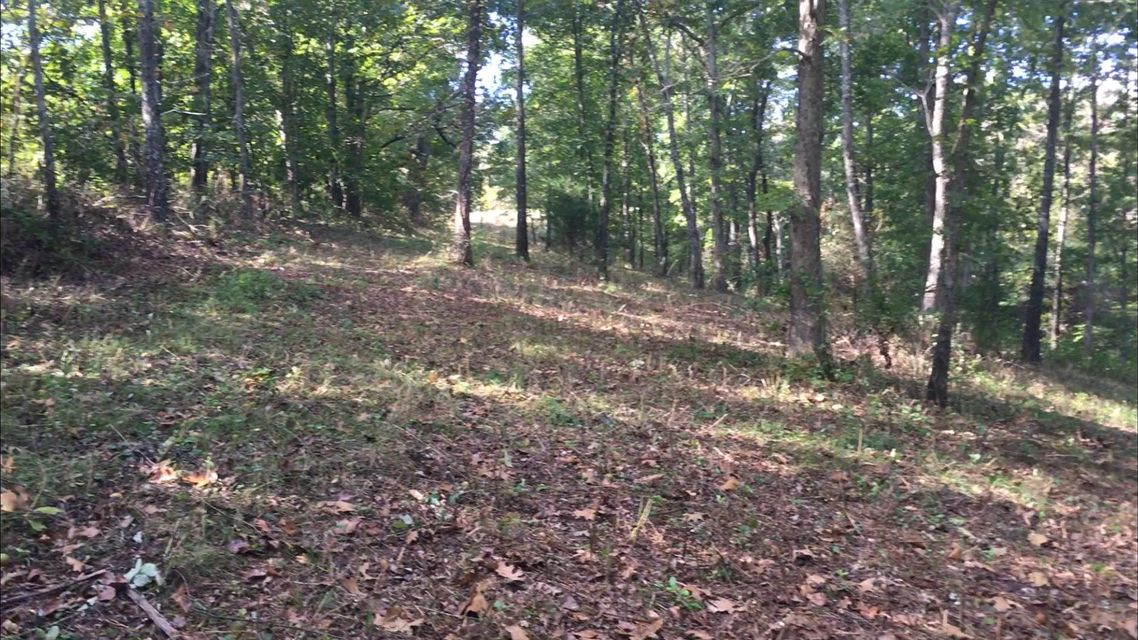 864  Anchor Hill Road Rogersville, MO 65742