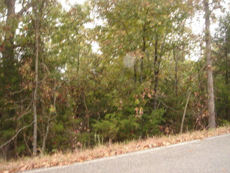 Whiterock Lane Kimberling City, MO 65686