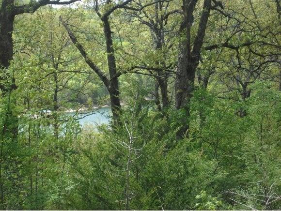 Treasure Hunt Trail Blue Eye, MO 65611