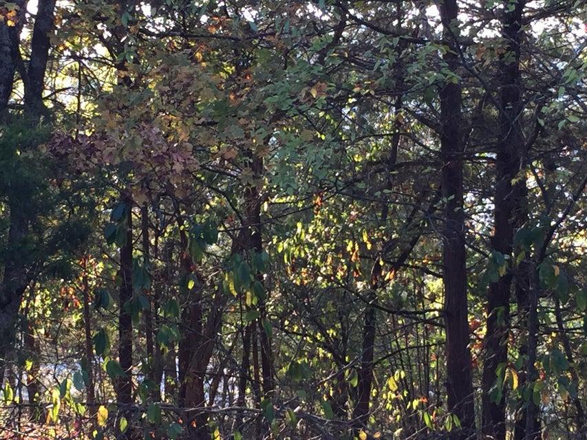 Lakeview Drive Branson, MO 65616