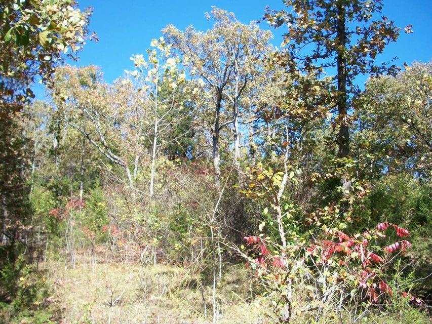 Mill Creek Shores Lane Lampe, MO 65681