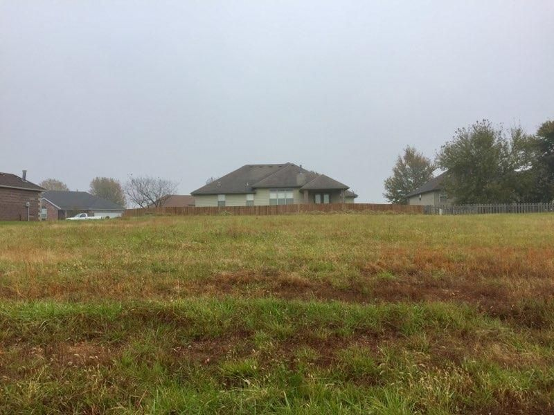Spring Meadow Drive Rogersville, MO 65742