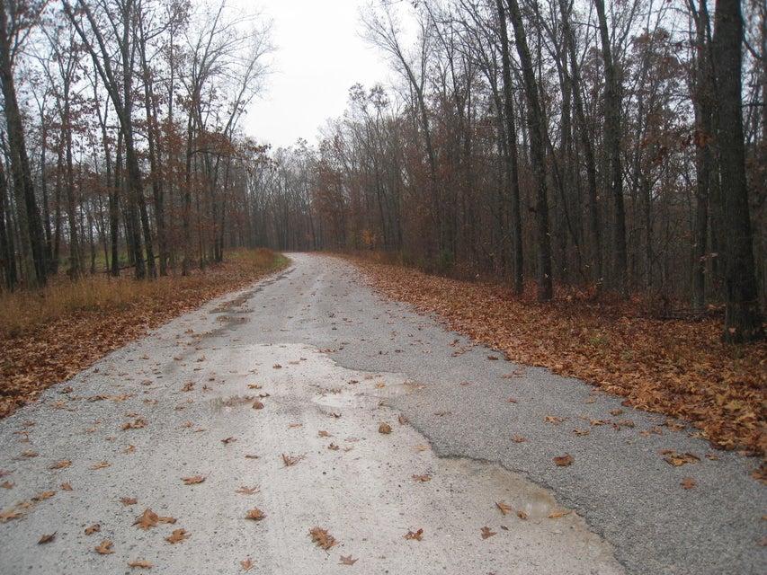 Buckskin Highlandville, MO 65669