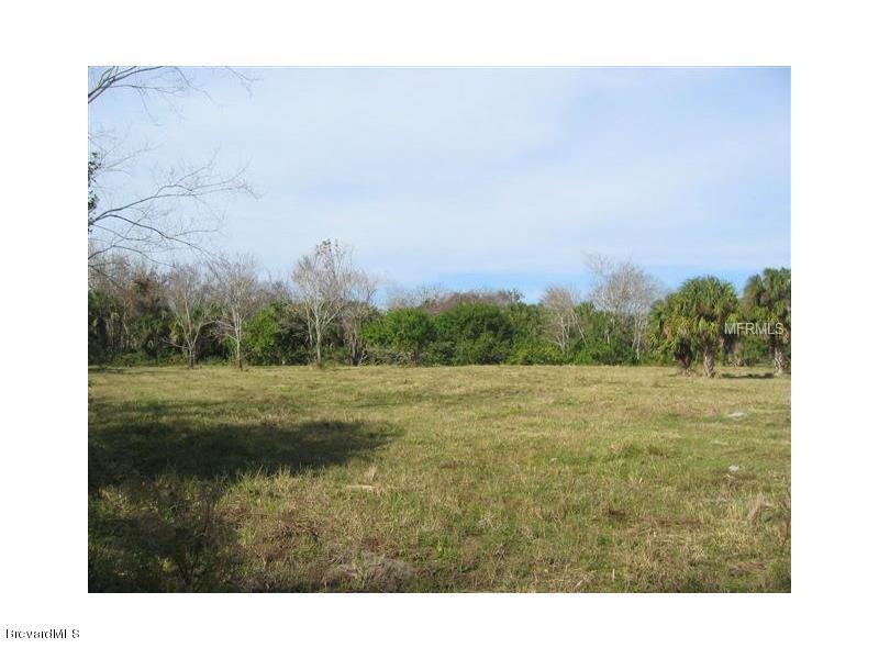 Đất đai vì Bán tại Lionel Mims, Florida 32754 Hoa Kỳ