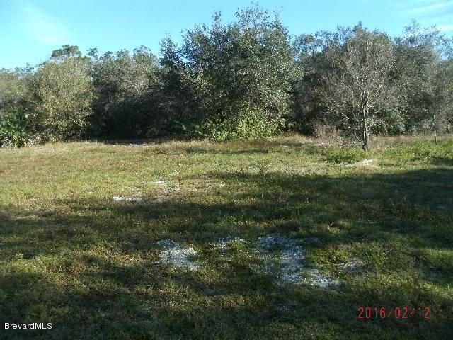 Land for Sale at 825 NE Cricket 825 NE Cricket Palm Bay, Florida 32907 United States