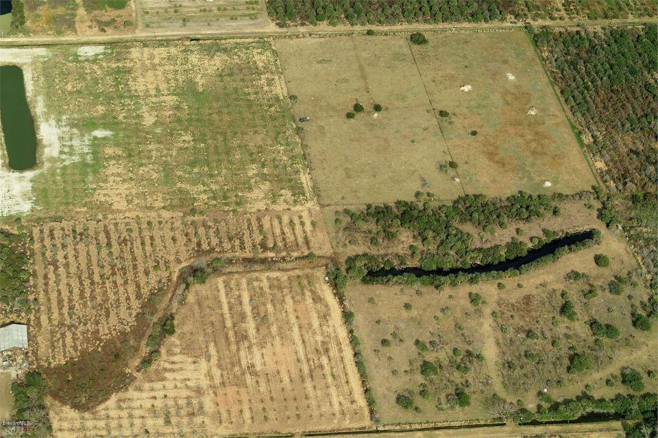 Land for Sale at Grantline Mims, Florida 32754 United States