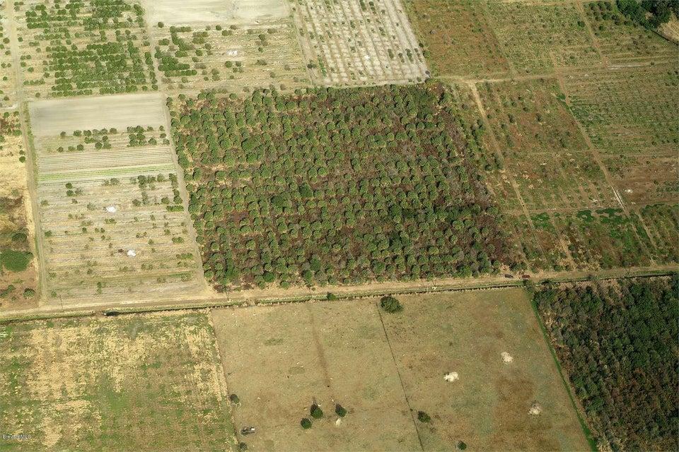 土地 為 出售 在 Orlando Orlando Mims, 佛羅里達州 32754 美國