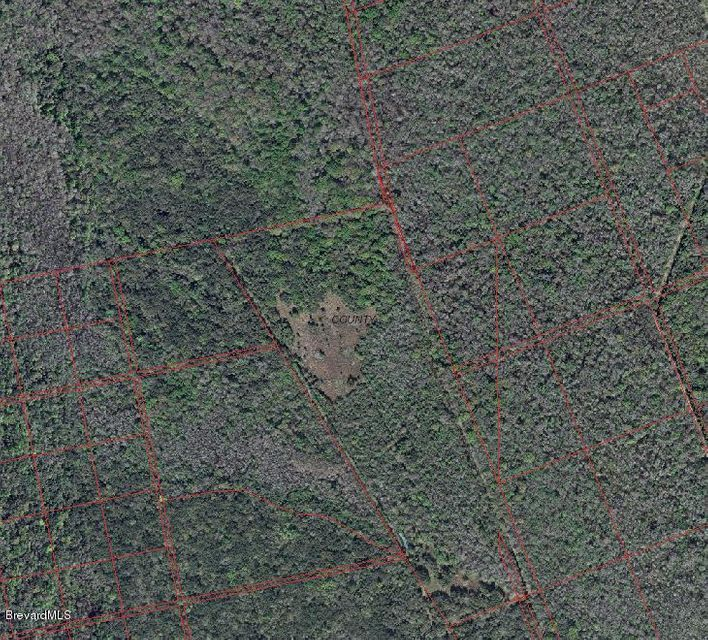 Additional photo for property listing at North Of U S Hwy 1 North Of U S Hwy 1 Oak Hill, Florida 32759 United States