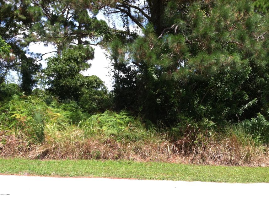 Vacant lot in natural state on a paved road ready for your new home. Two adjacent lots are also available. See MLS 762874 and 762877 Buy one or combine.