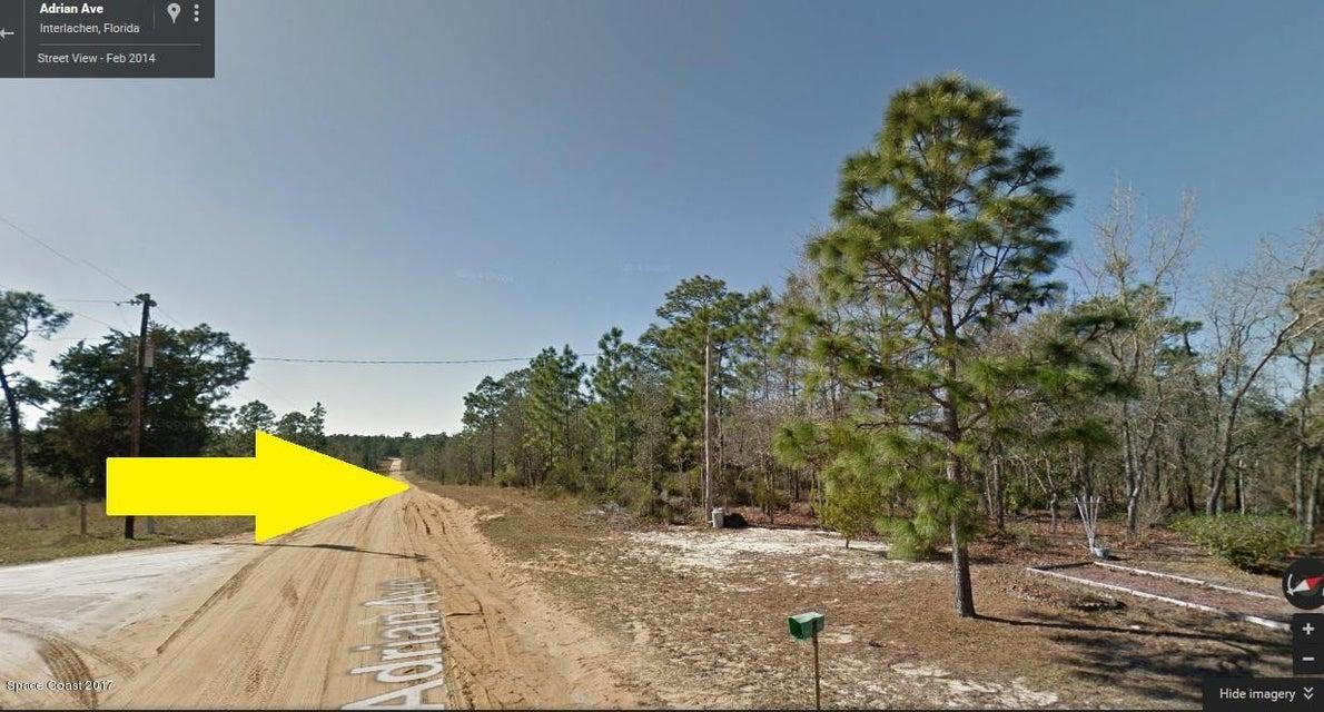 Terrain pour l Vente à Adrian Adrian Satsuma, Florida 32189 États-Unis
