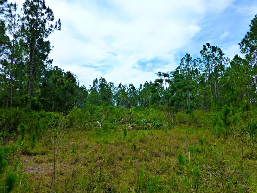土地 為 出售 在 8900 Sr-46 8900 Sr-46 Mims, 佛羅里達州 32754 美國