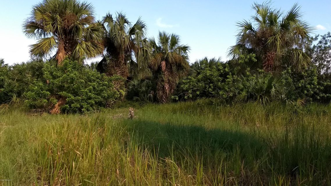 Land for Sale at 1991 Conkling Palm Bay, Florida 32908 United States