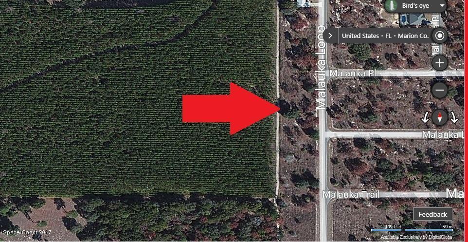 토지 용 매매 에 Malauka Loop, Weirsdale, 32195 Malauka Loop, Weirsdale, 32195 Oklawaha, 플로리다 32179 미국