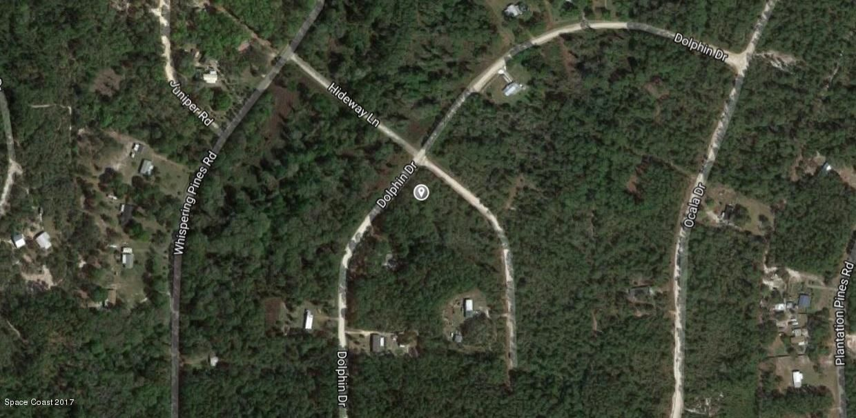 Land for Sale at Dolphin Dolphin Georgetown, Florida 32139 United States