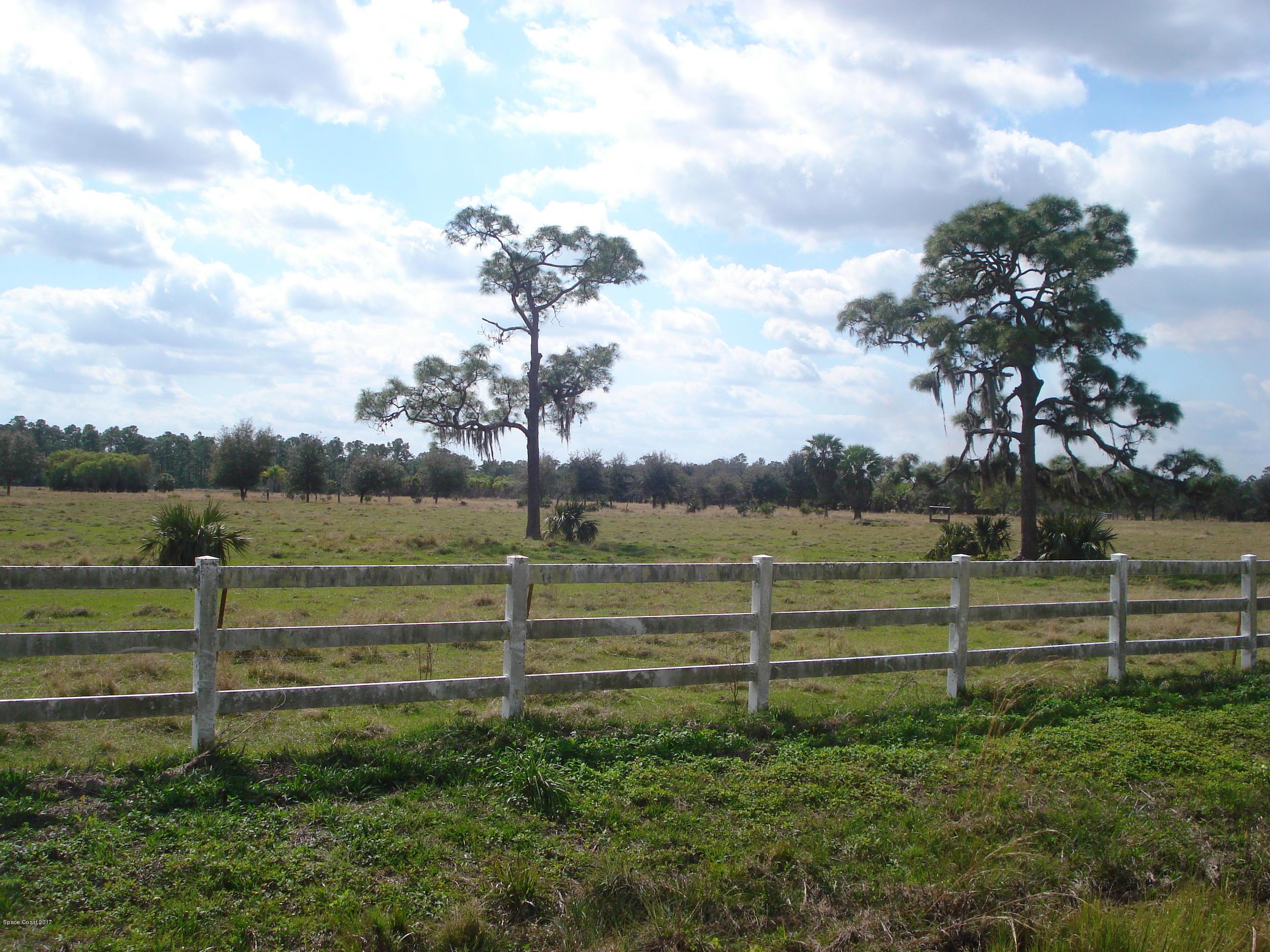 土地 为 销售 在 1 Ramblebrook 1 Ramblebrook 格兰特, 佛罗里达州 32949 美国