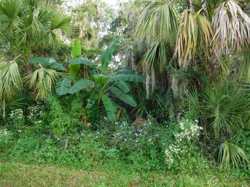 土地 のために 売買 アット Lime Tree Lime Tree Edgewater, フロリダ 32141 アメリカ合衆国