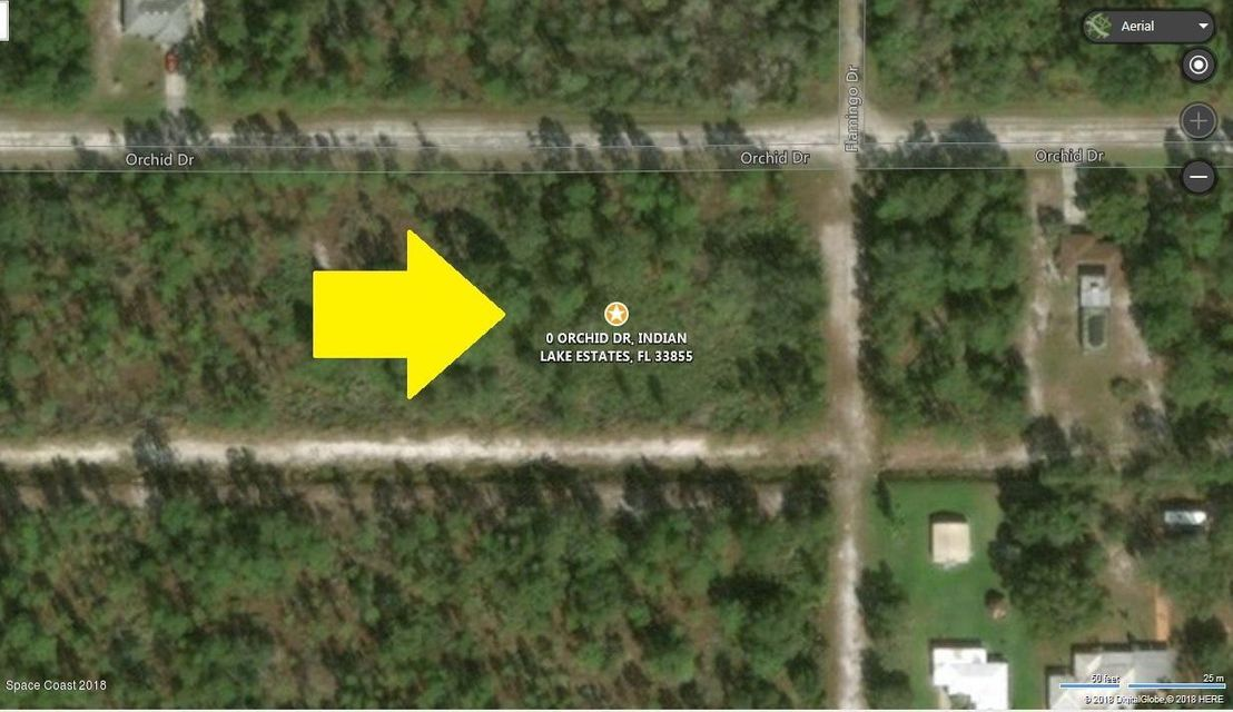 Terreno per Vendita alle ore Orchid Orchid Indian Lake Estates, Florida 33855 Stati Uniti