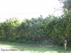 4911 Flora Drive
