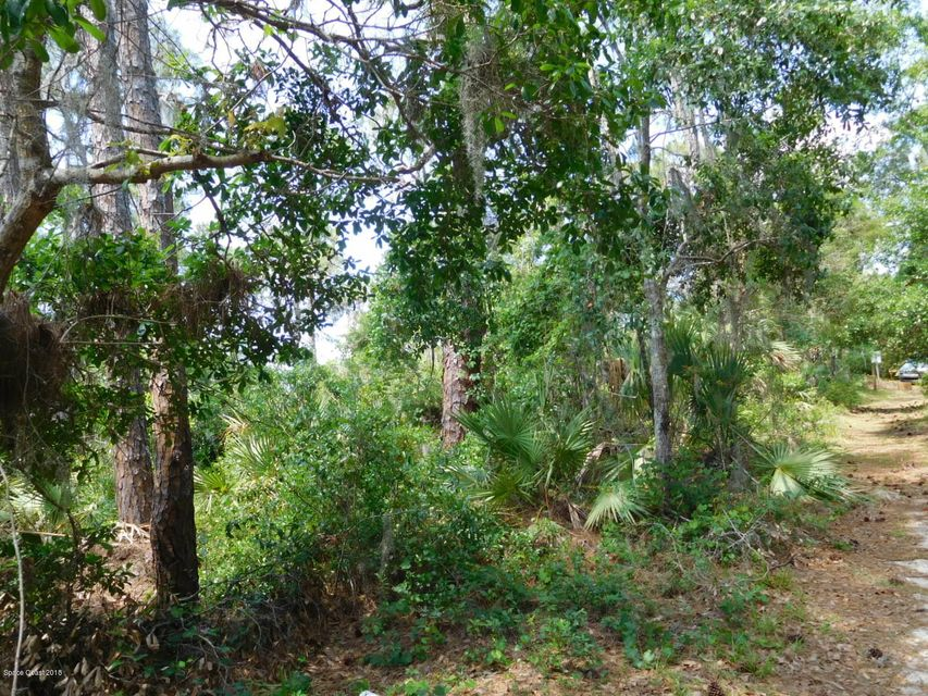 Land for Sale at Osteen Parcel E Osteen Parcel E Oak Hill, Florida 32759 United States