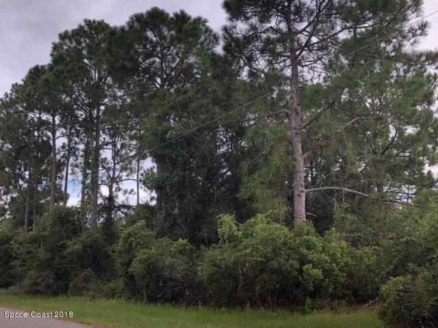 土地 のために 売買 アット Bodmin Bodmin North Port, フロリダ 34291 アメリカ合衆国