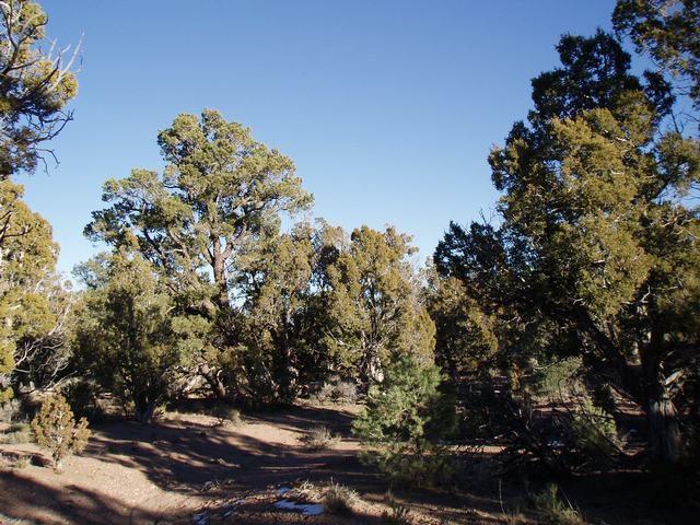 Land for Sale at SEC 10 T32S R19W SEC 10 T32S R19W Modena, Utah 84753 United States