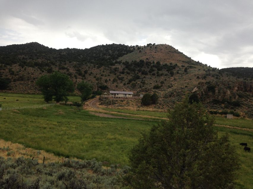 Rare Find In Pinto! Great horse/cattle property. Includes 1 ac ft of water right in well for home use and water right from stream sufficient to irrigate 3 acre+/- of pasture.1260 Sf ranch house sits on top of ridge overlooking pasture and stream. Great views! Large barn, corrals, and loading chute. Plenty of room for ATV\