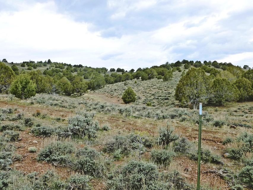 Additional photo for property listing at Hwy 120 Hwy 120 Enterprise, Utah 84725 Estados Unidos