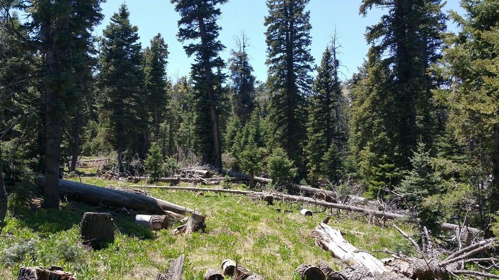 土地,用地 为 销售 在 950 Shale Cir, ZVME E-129 950 Shale Cir, ZVME E-129 Duck Creek Village, 犹他州 84762 美国