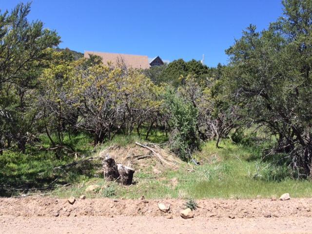 土地,用地 为 销售 在 590 Oakridge Drive 590 Oakridge Drive Pine Valley, 犹他州 84781 美国