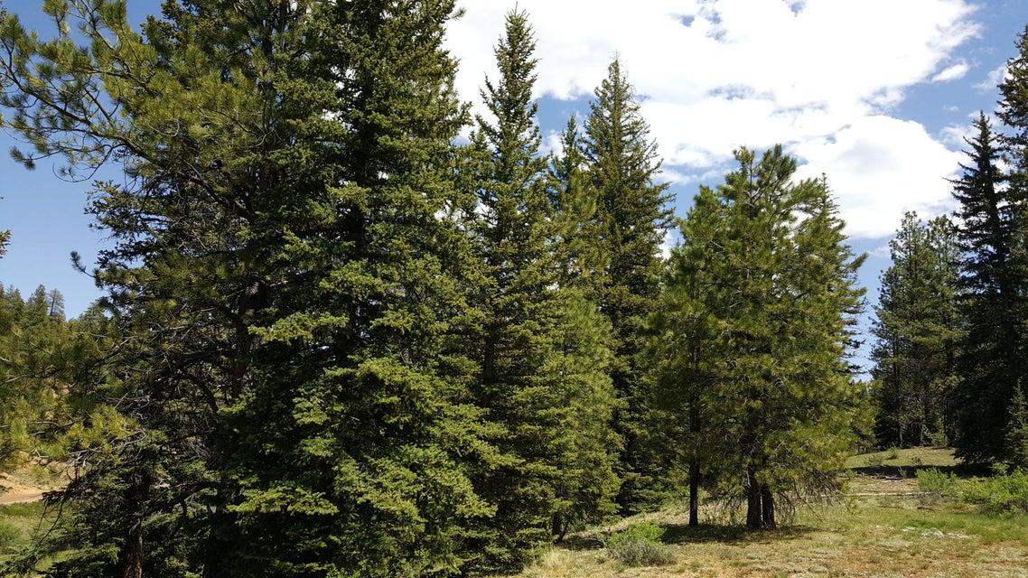 Additional photo for property listing at 60 TONTO Trail 60 TONTO Trail Duck Creek Village, Юта 84762 Соединенные Штаты