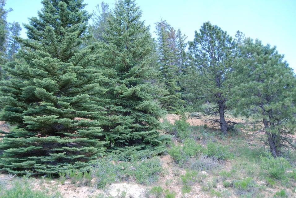 Land for Sale at 980 HARRIS SPRING Road 980 HARRIS SPRING Road Duck Creek Village, Utah 84762 United States