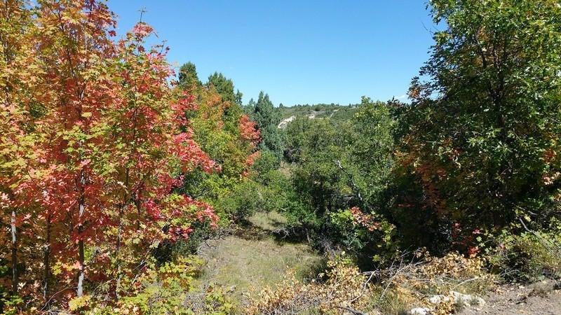 Additional photo for property listing at 1850 Manitoban Trl, ER 3-36 1850 Manitoban Trl, ER 3-36 Duck Creek Village, Utah 84762 United States