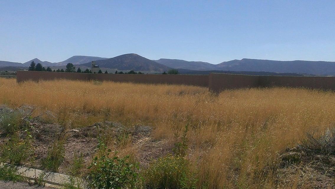 Additional photo for property listing at 775 100 775 100 Enterprise, Utah 84725 États-Unis