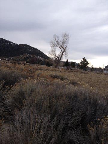 أراضي للـ Sale في 21 580 21 580 Pine Valley, Utah 84781 United States
