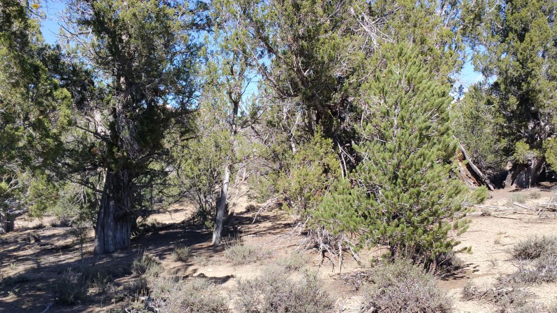 Additional photo for property listing at Johnny Brown Pkwy Johnny Brown Pkwy Kanab, 犹他州 84741 美国
